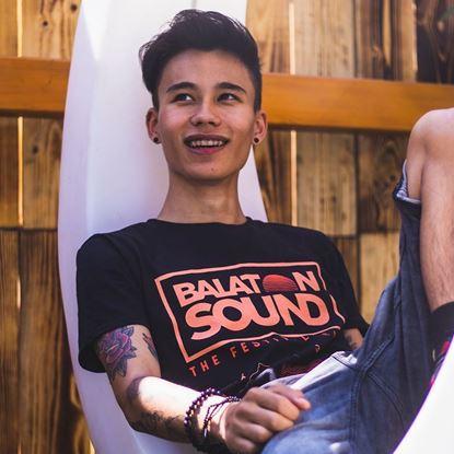 Picture of BALATON SOUND // Men Zamardi t-shirt